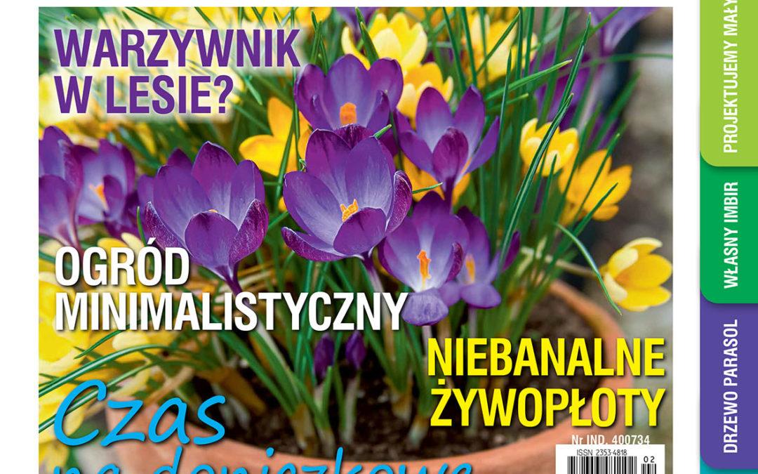 """Lutowy numer """"Mojego Ogródka"""" w sprzedaży od 18 stycznia"""