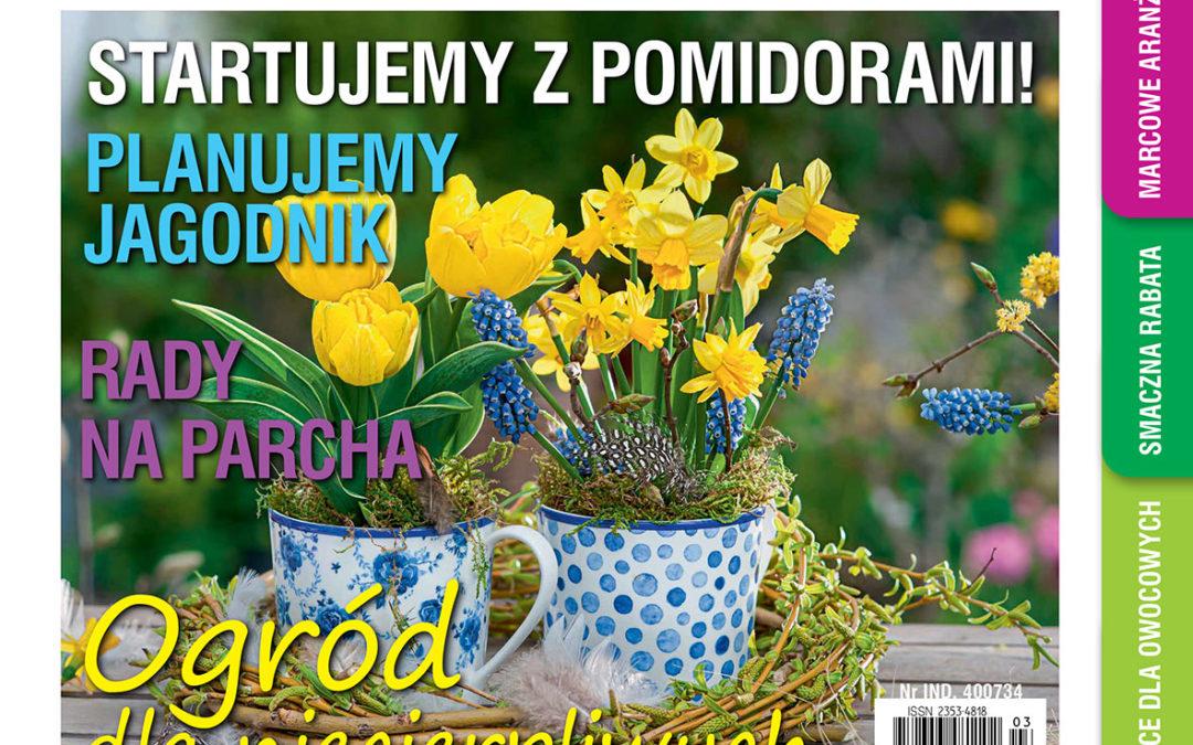 """Marcowy numer """"Mojego Ogródka"""" w sprzedaży od 17 lutego!"""